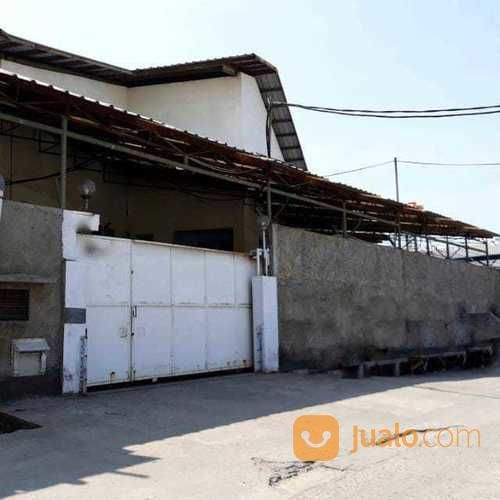 Pabrik daerah perguda properti pabrik 20091151