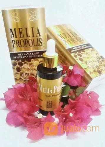 Melia propolis 55ml nutrisi dan suplemen 20121119