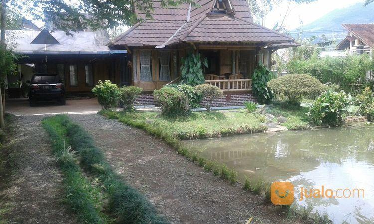 Villa cikajang garut villa dijual 20416083
