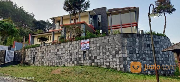 Villa triniti kampung villa dijual 20751479