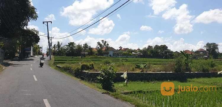Tanah kosong di jl ut tanah dijual 21293075