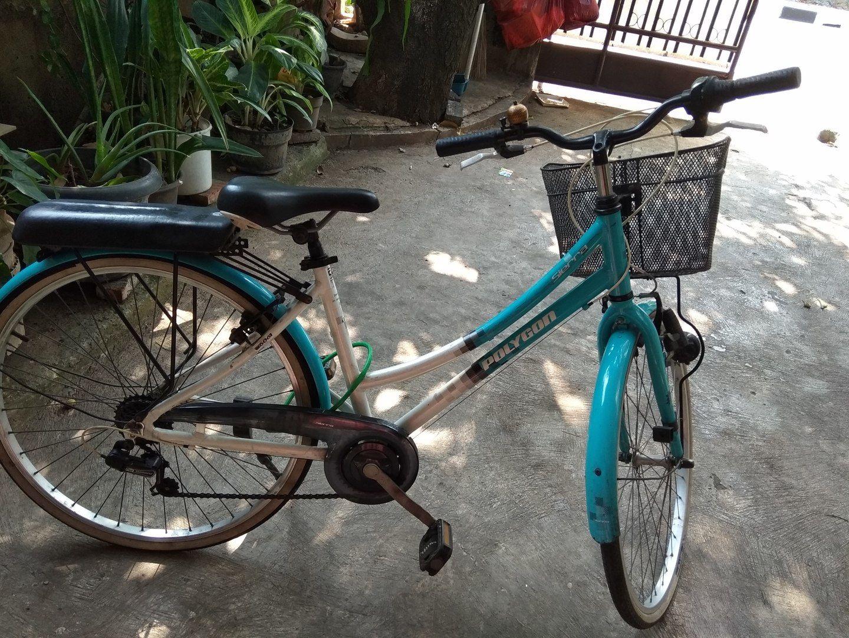 City Bike Poligon