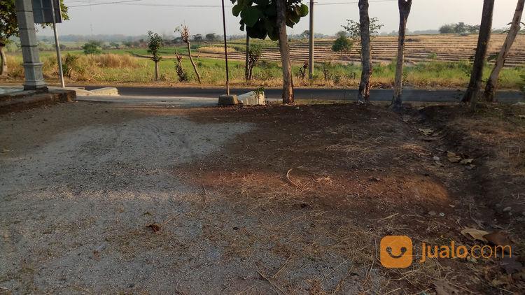 Tanah di pilangrejo k tanah dijual 22060015