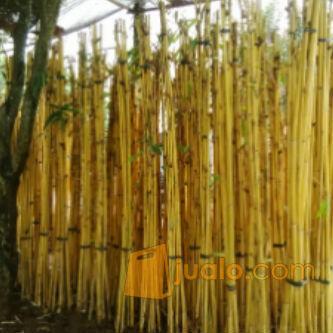 40+ trend terbaru dekorasi taman bambu - fatiha decor