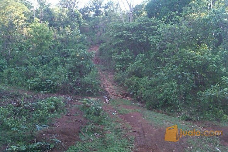 Tanah luas benteng ga properti tanah 4363337