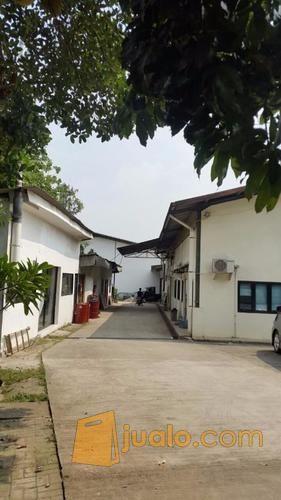 Pabrik pondok jagung properti pabrik 9498707